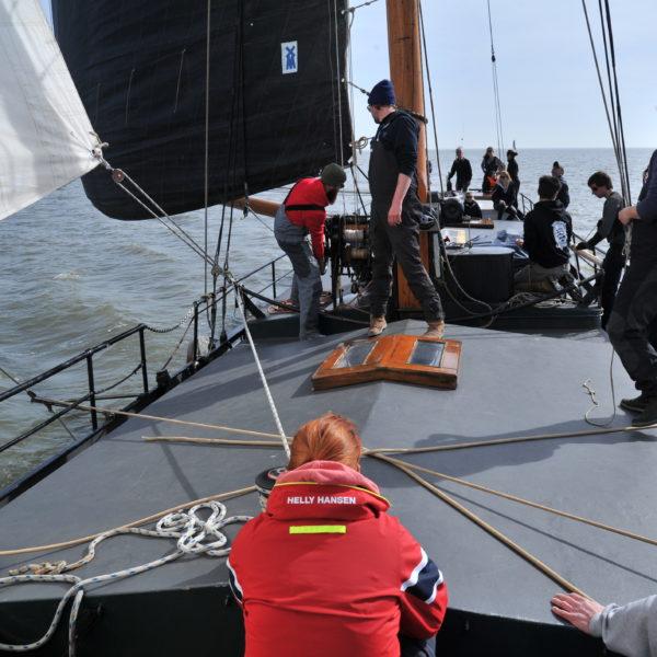 Segeln mit der Gruppe Waddenzee @Gouden Vloot Sailing Trips